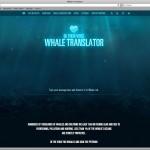 Whale Translator - Gib den Walen eine Stimme